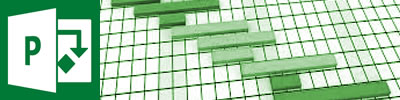 Microsoft Project Courses